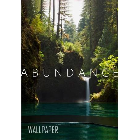 LOA - Abundance
