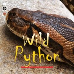 Wild Python - Iconpackager Theme